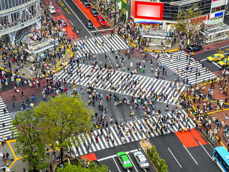 Tokyo, Crossing, Busy, Japan